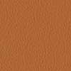 #9009 ockerbraun, Leder leicht pigmentiert