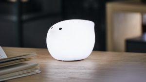 Der-NOW-25-MINI-Moon-Birdy-ist-eine-stylische-Lampe-die-über-USB-Anschluss-geladen-wird.-Einmal-geladen-kannst-Du-den-Birdy-überall-hin-mitnehmen....jpg